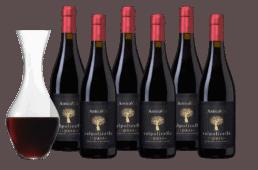 Wijnpakket Antica Viti Ripasso - 6 flessen + karaf