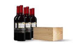 Wijnkist Calle Principal Tempranillo-Cabernet Sauvignon Viño de la Tierra Castilla (6 flessen)